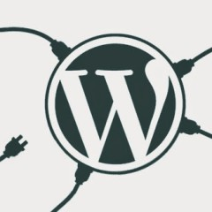 WordPress plugin feed