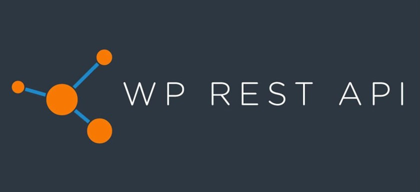 WP REST API JSON REST API