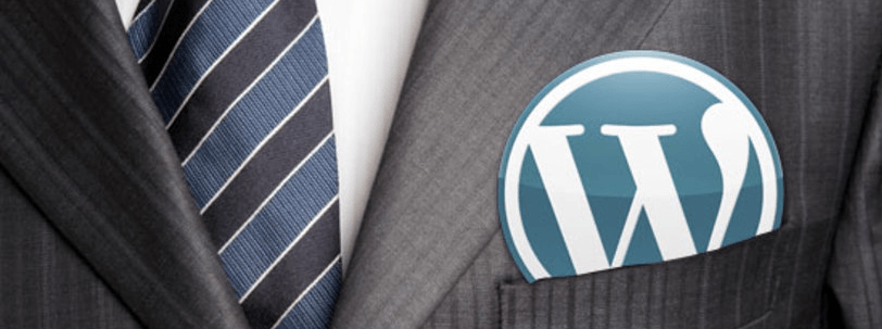 profesional-wordpress.png