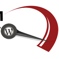 Mantén tu WordPress en forma