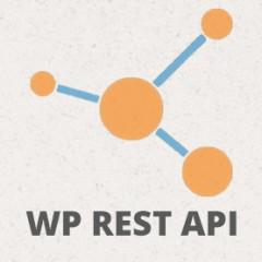 WordPress REST API ¿qué es? ¿cómo funciona?