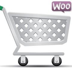 Cómo cambiar el orden de las pestañas de producto en WooCommerce