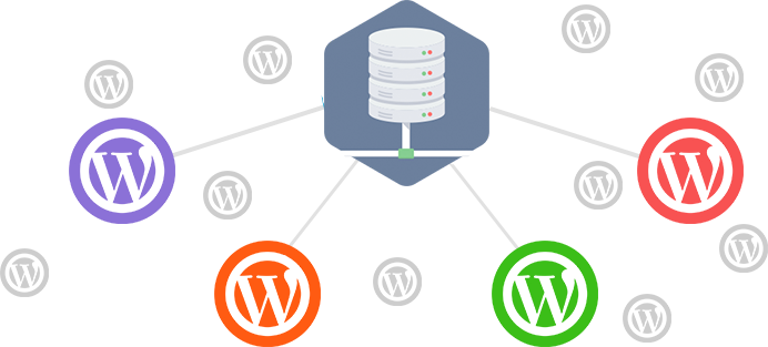 WordPress network
