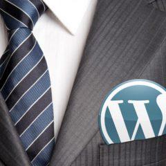 El 99% de los usuarios de WordPress no saben de WordPress y eso es bueno