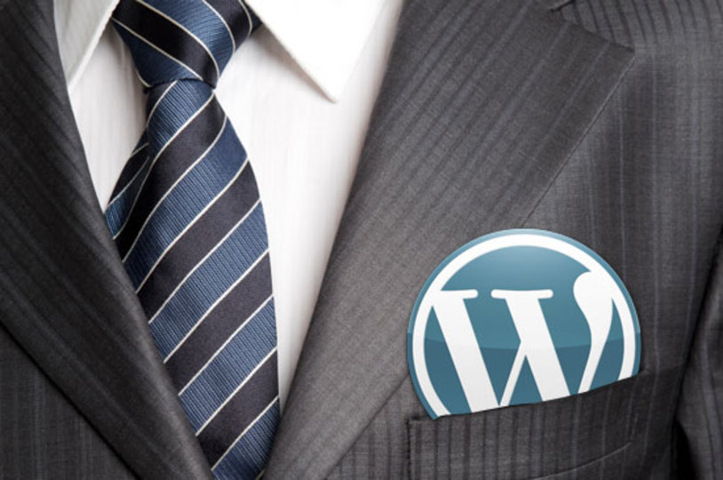 profesional wordpress