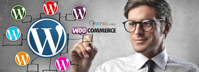 experto profesional WordPress
