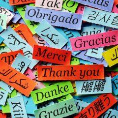Idiomas secundarios en WordPress