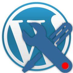 Exporta e importa los ajustes del personalizador de WordPress en un clic