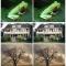 Cómo mejorar automáticamente imágenes JPG subidas a WordPress