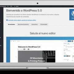 El modo más rápido de aplicar formatos en el editor de bloques de WordPress