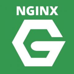 Cómo optimizar los plugins de caché de WordPress para Nginx