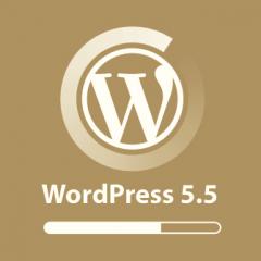 WordPress 5.5 incluirá actualizaciones automáticas de plugins y temas, mapas del sitio XML, carga diferida nativa y mucho más