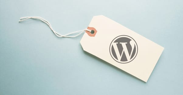Categorías y etiquetas (tags) en WordPress 15